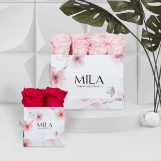 Mila Roses - Everlasting roses - Limited Editions